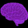 Ikona mózg w kolorze, bez tła, zmniejszone do 95 px, mail powitalny life4more.pl