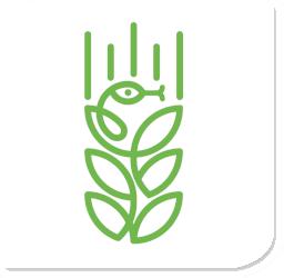 logo_izz